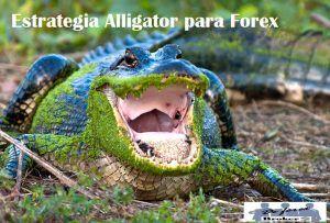 Estrategia Alligator