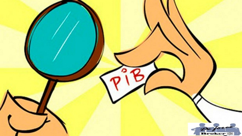 indicadores económicos el pib