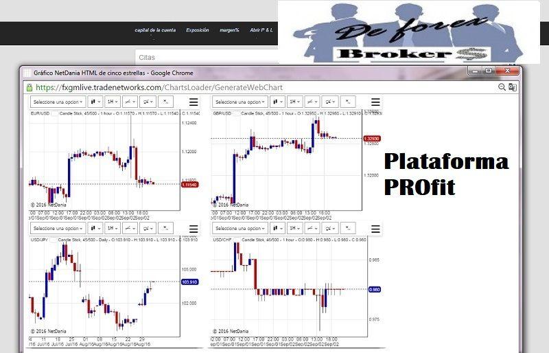plataforma profit fortissio