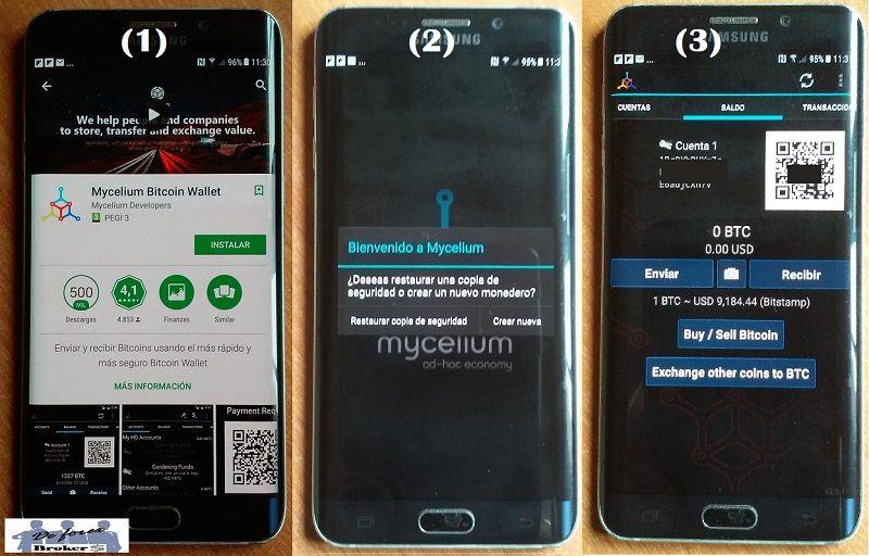 mycelium tutorial app